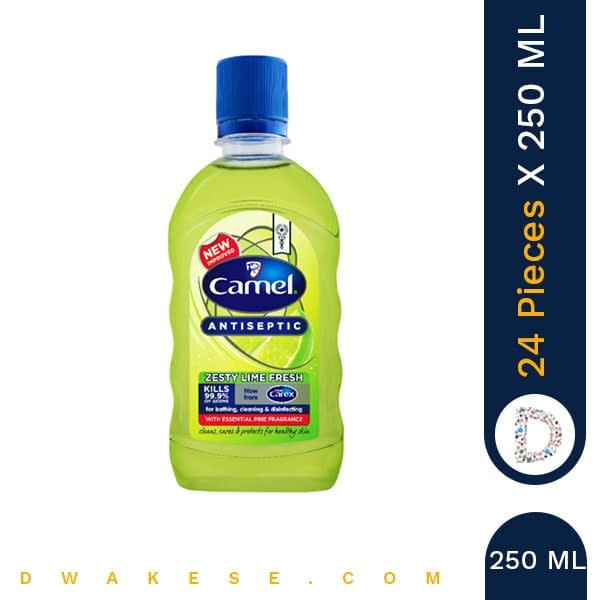 CAMEL ANTISEPTIC ZESTY LIME FRESH 250ml x 24 PIECES